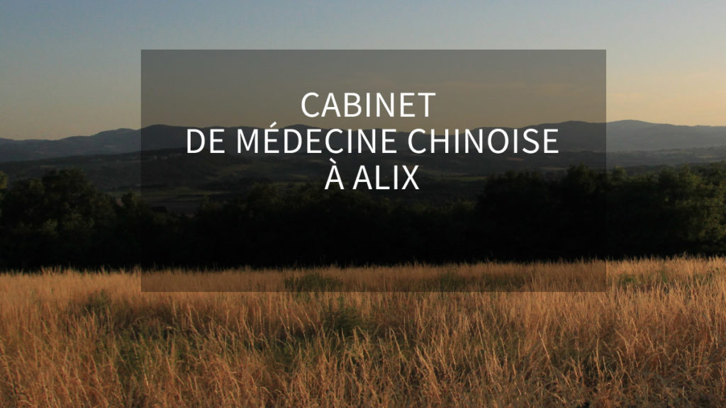 acupuncture alix - chatillon - chessy