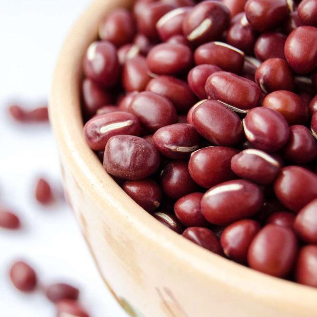 Haricot azuki : soja rouge